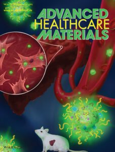 Cover Picture in Advanced Healthcare Materials - Kaps et al. 2015