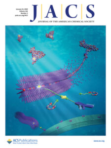 Cover picture in JACS - Chen et al. 2020