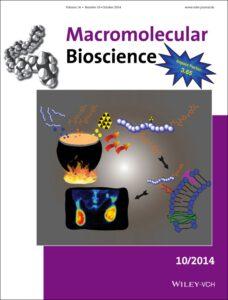 Back cover picture in Macromolecular Bioscience - Schieferstein et al. 2014