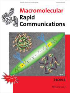 Back cover in Macromolecular Rapid Communications - Nuhn et al. 2014
